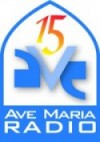 AMR 15 Yr Logo